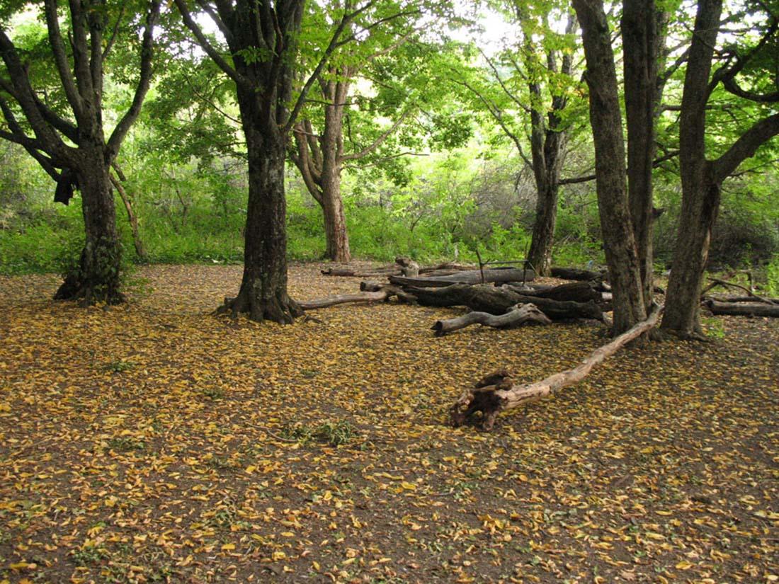 Экологический туризм в крыму заряд
