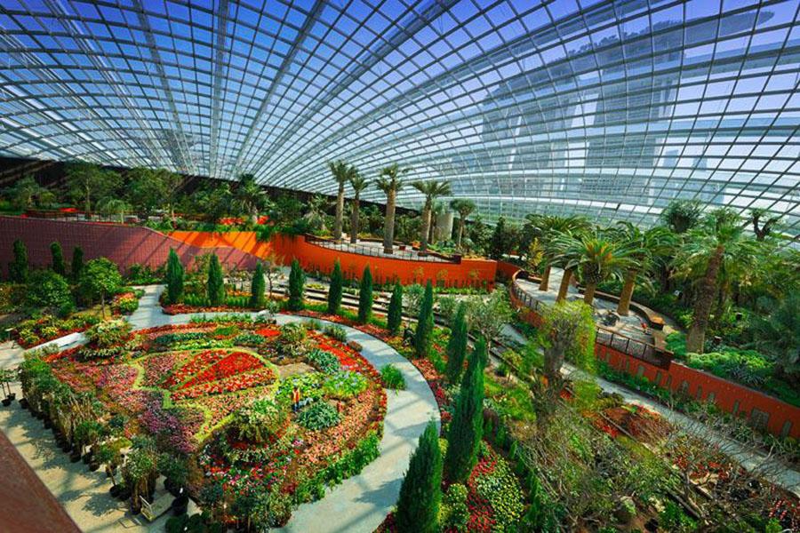 растения в зимних садах Сингапура