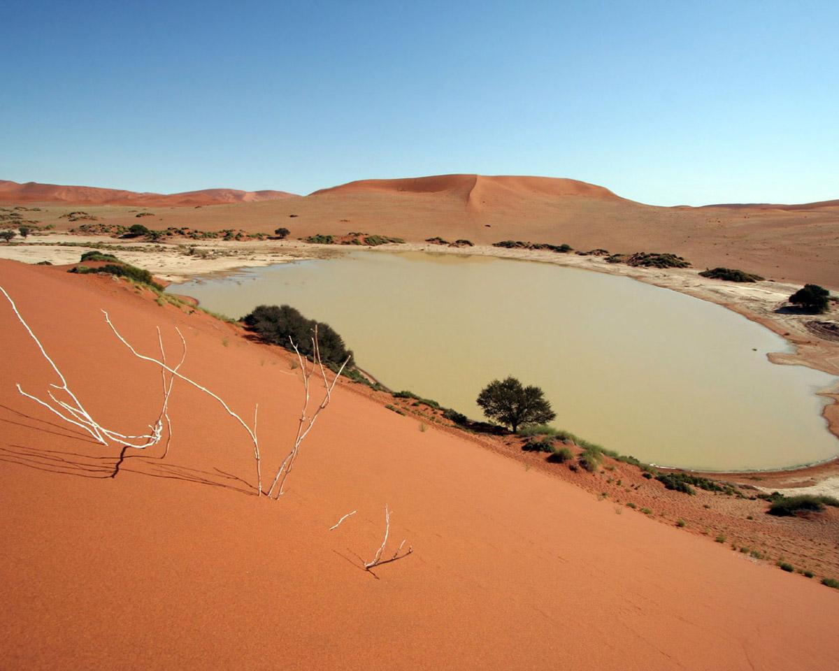 Фото у далекій пустелі 15 фотография