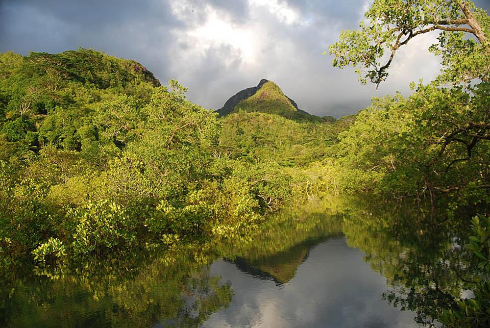 Morne Seychellois