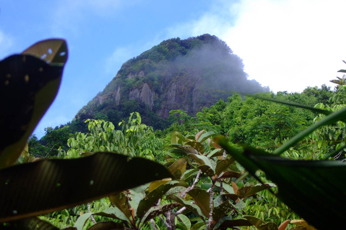 гора Сейшельский Морн