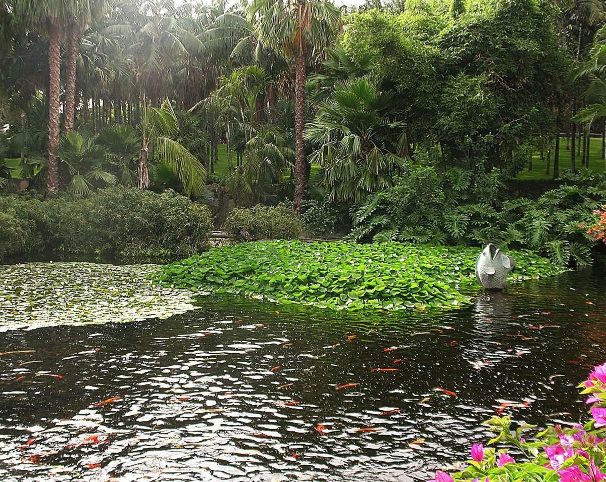 парк Орлов на Тенерифе
