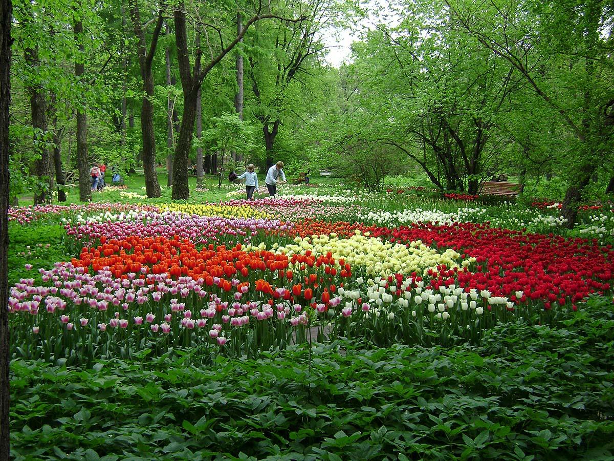Секс ботаническом саду 2 фотография