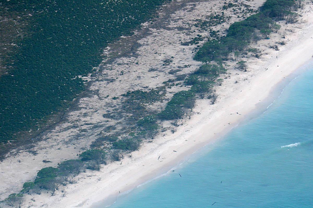 Lisianski Island