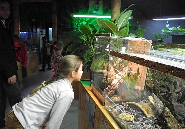 Террариум киевского Дельфинария