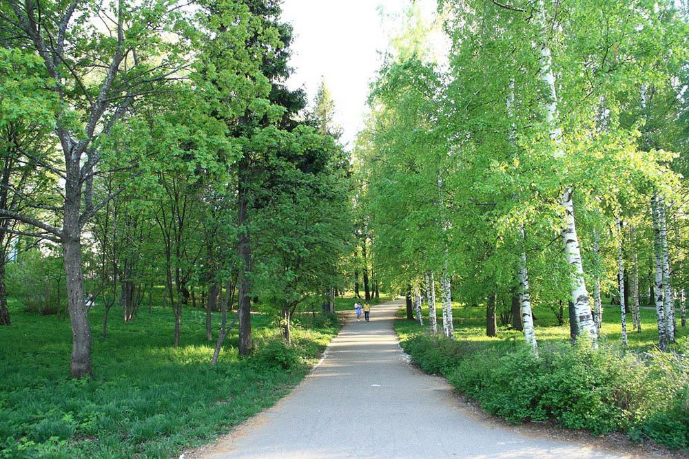 главная аллея Александровского сада в Кирове