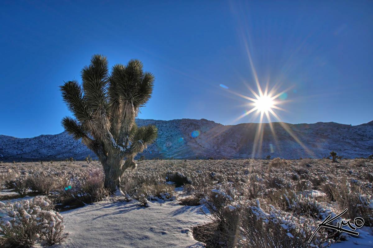 Las-Vegas, Nevada, Mojave desert