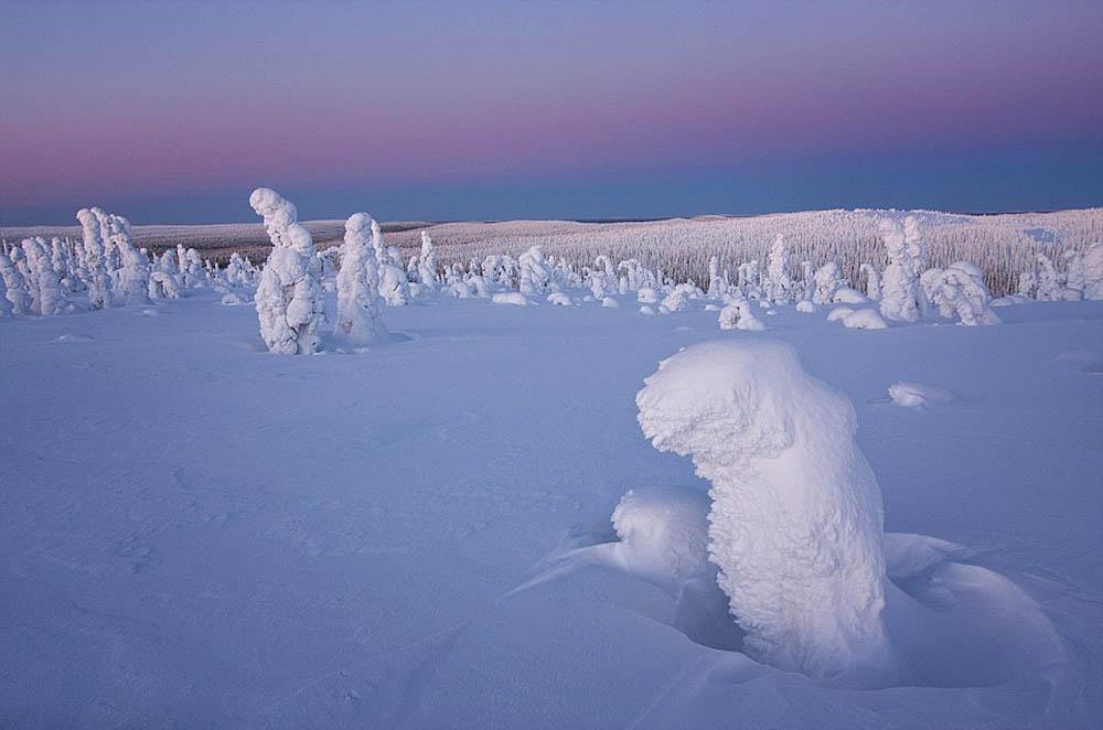 Стражи Арктики, Нацпарк Рииситунтури, Лапландия, Финляндия