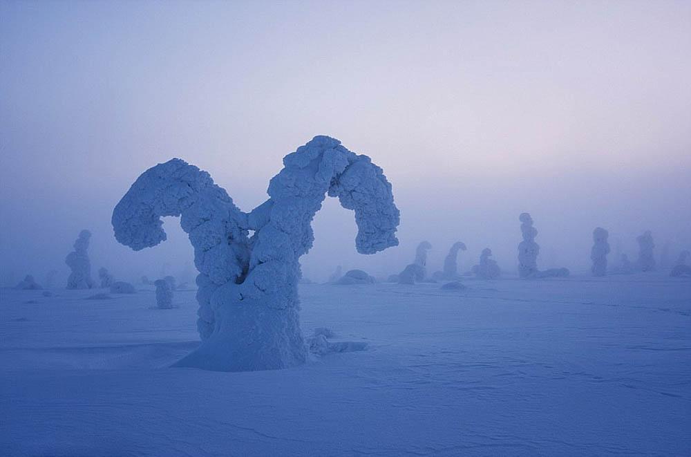 Стражи Арктики, Нацпарк Рииситунтури, Лапландия