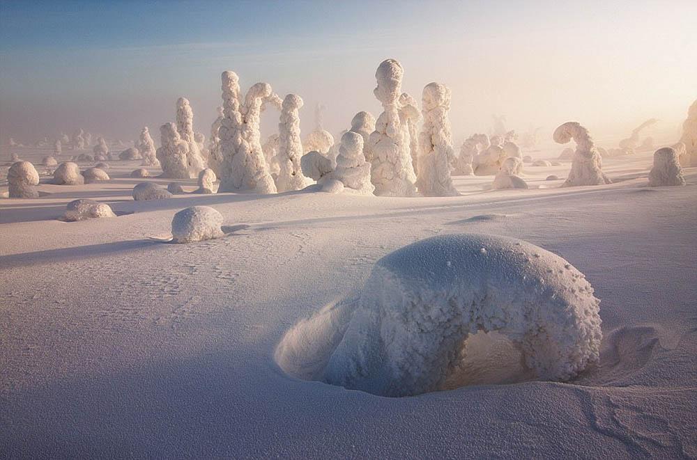 Стражи Арктики, Никколо Бонфандини