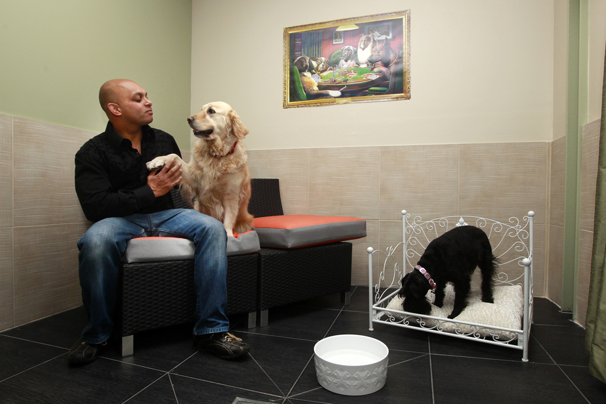 Actuel Dogs Hotel