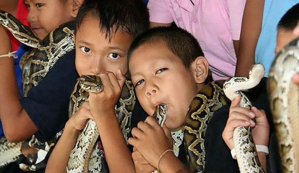 Ban Kok Sa-Nga, Tailand