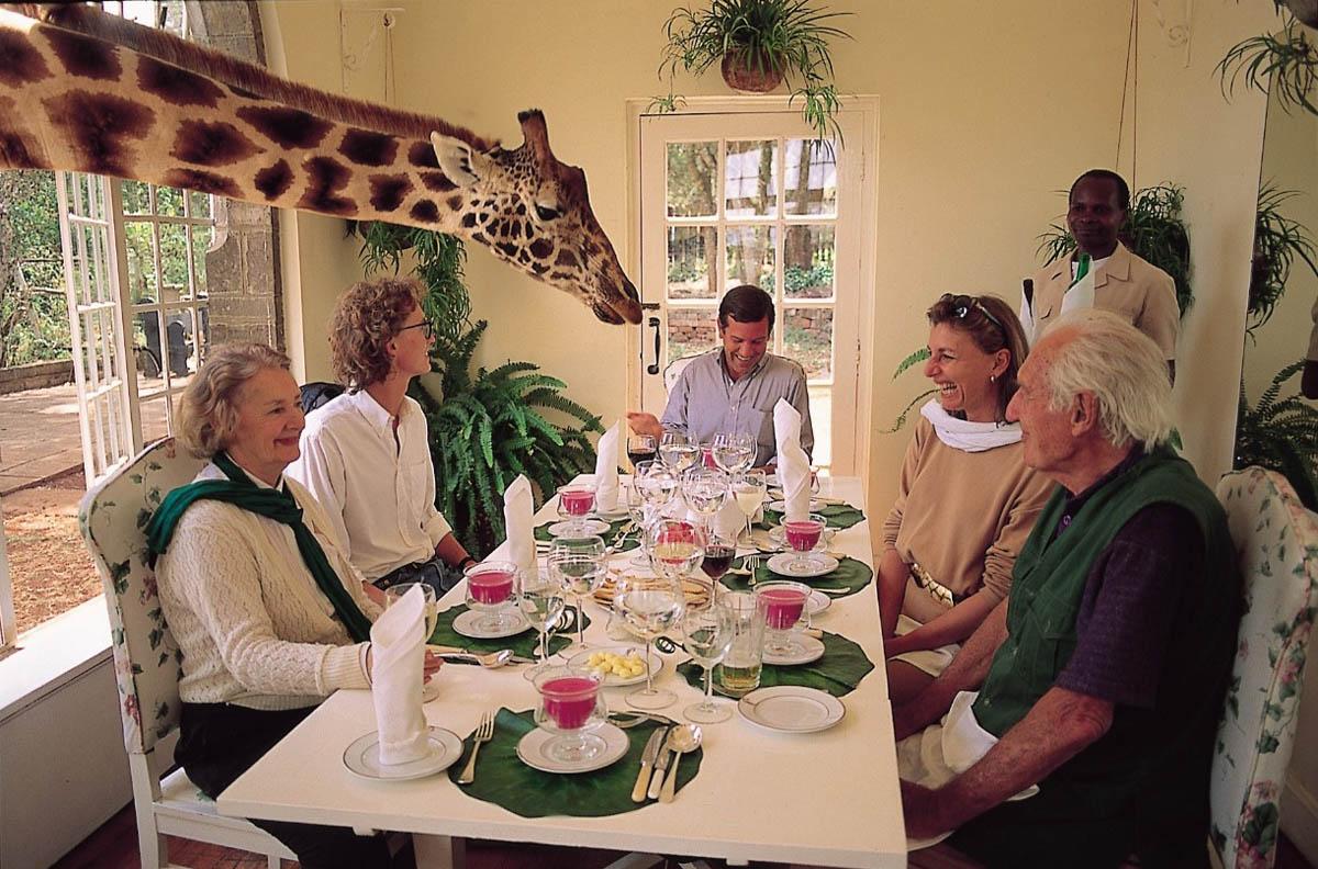 Giraffe Manor, Africa
