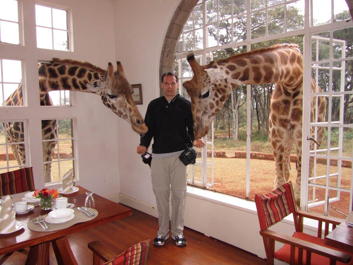 Greg and giraffes