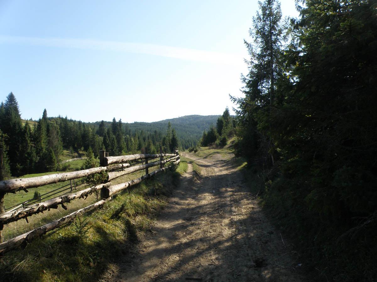 Ужанский национальный природный парк, Карпаты
