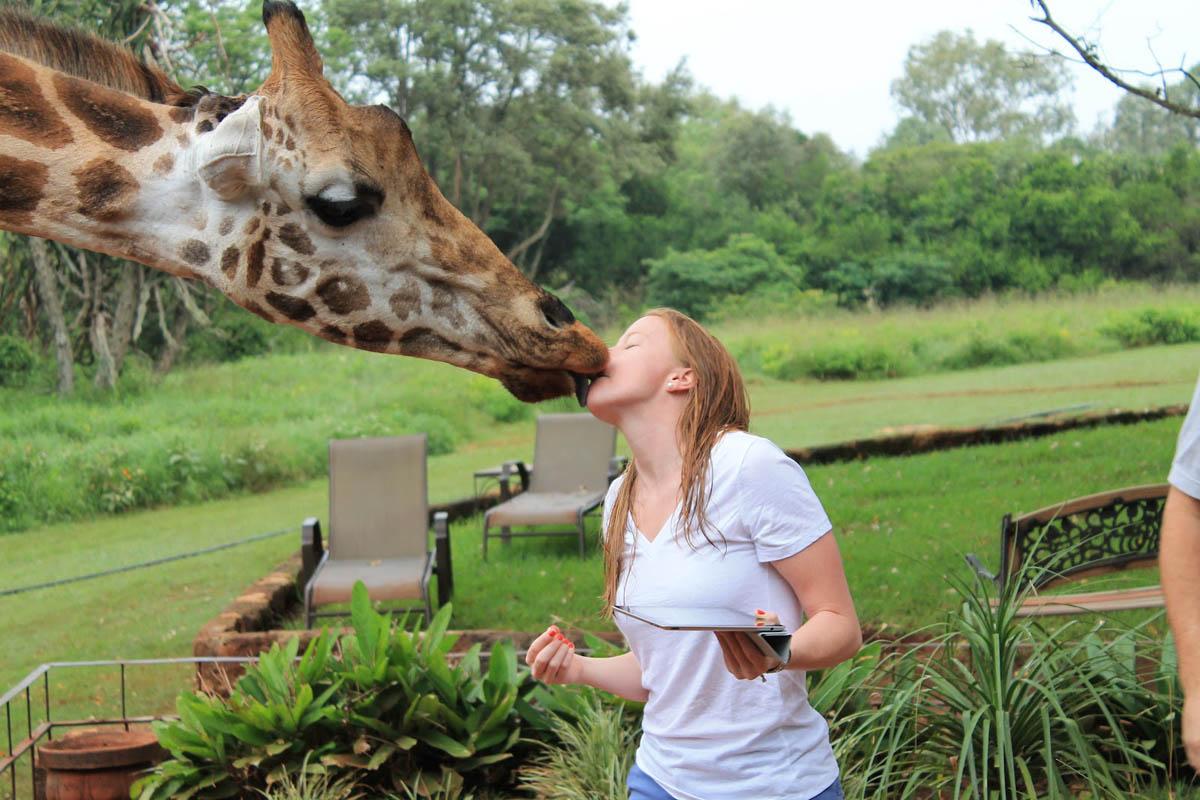 эко-отель Giraffe Manor, Найроби, Кения