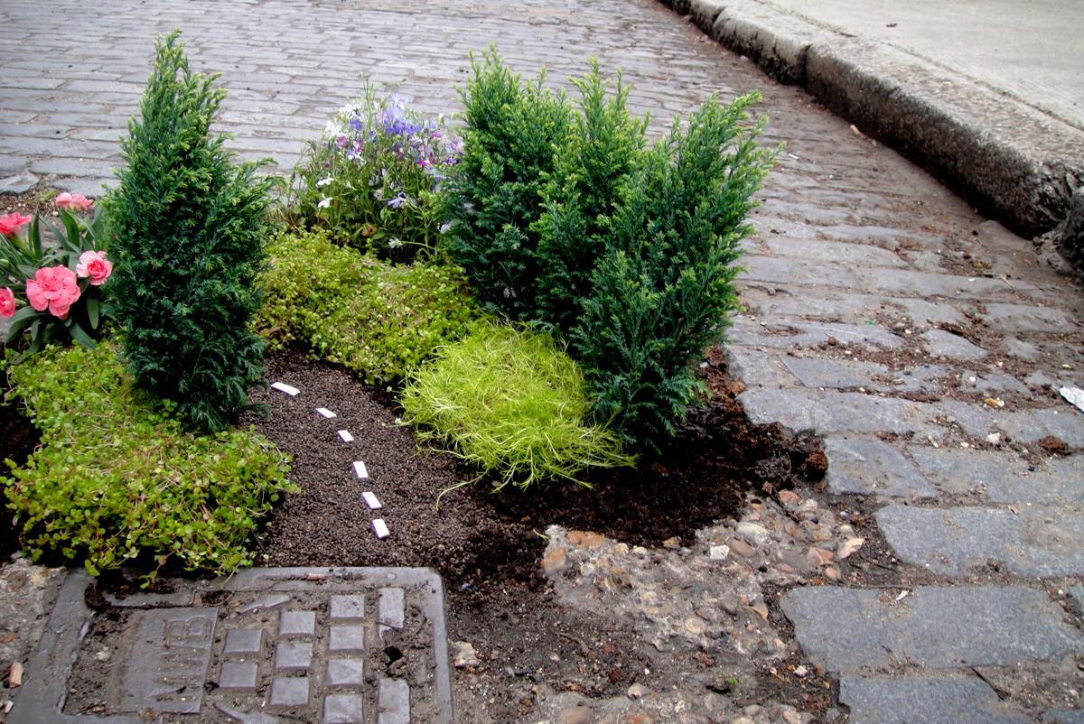 мини-сады Стива Уина в Лондоне