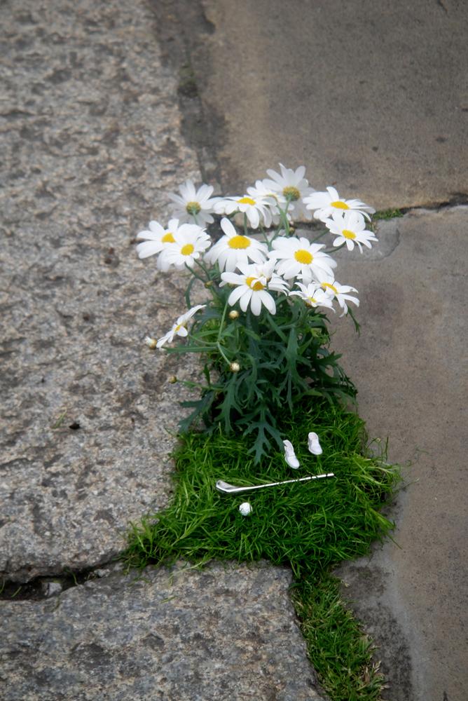 миниатюрные сады Стива Уина на улицах Лондона, Англия