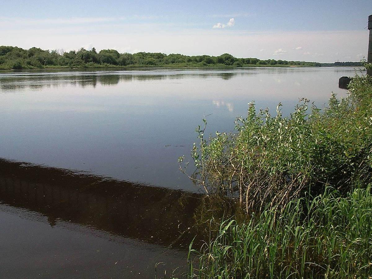 река Ветлуга, Нижегородская область