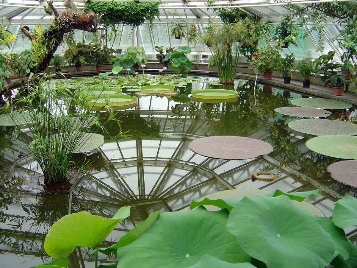 Botanical Garden Berlin, Victoria House