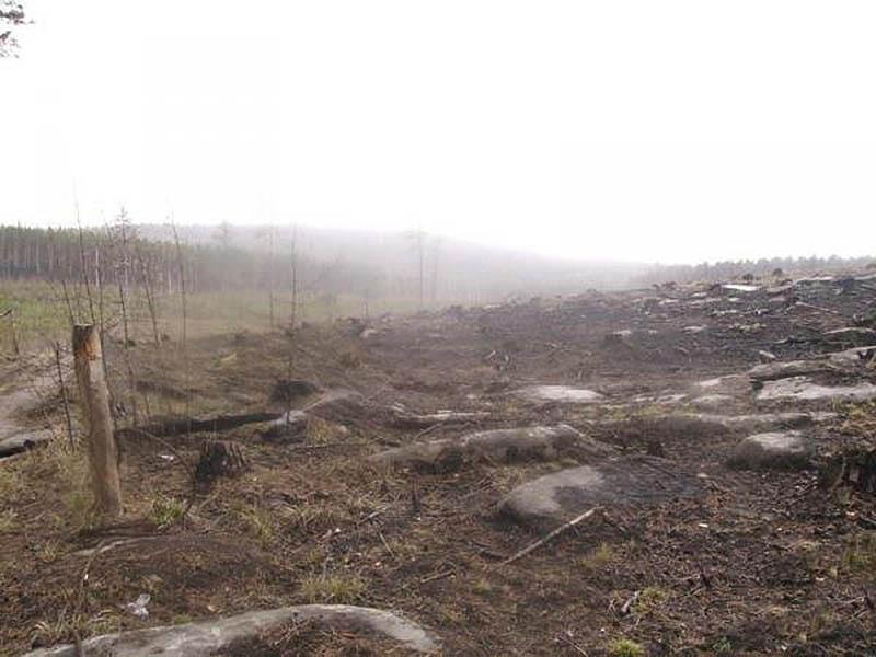 Чертово кладбище в Красноярском крае