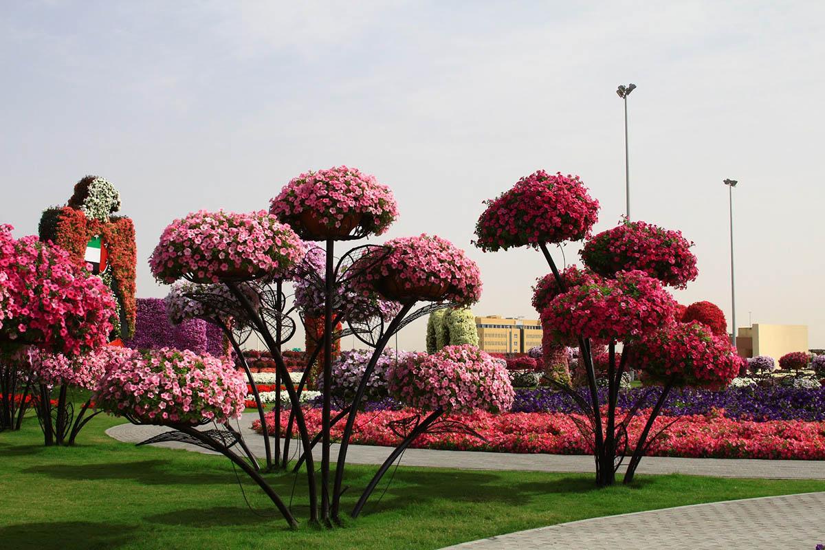 Чудо-сад в Дубае, ОАЭ