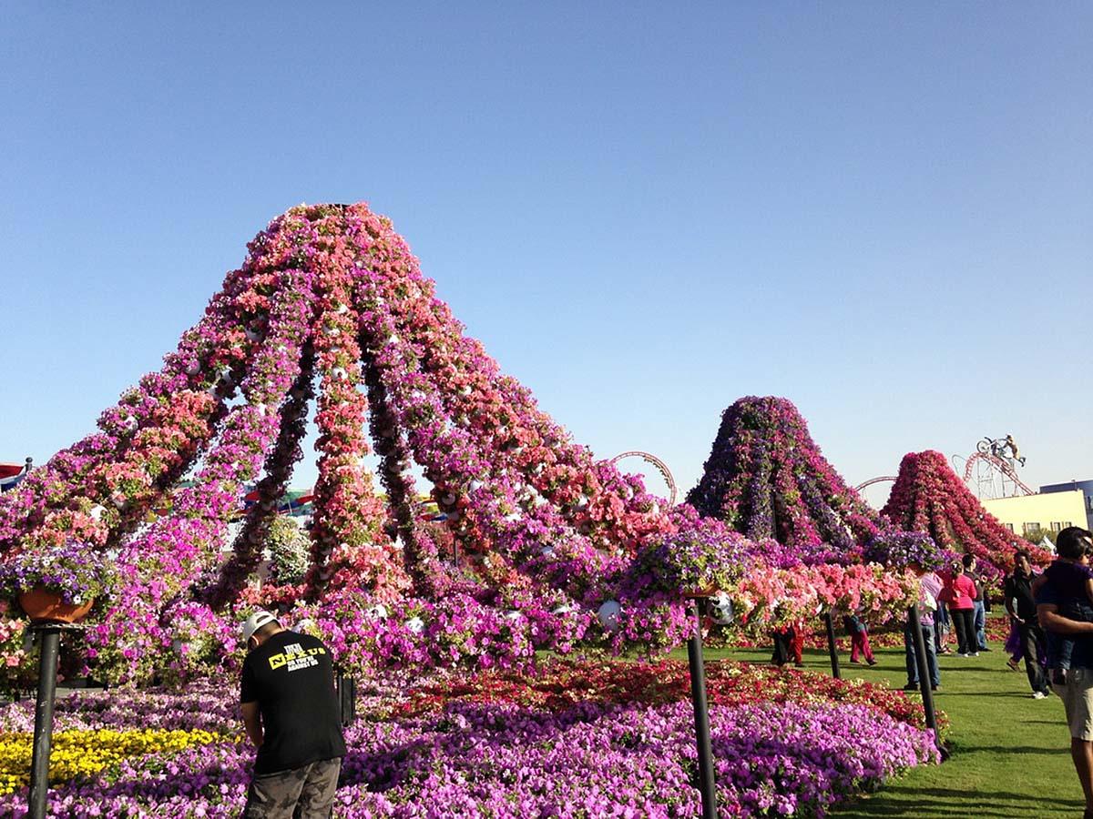 Dubai Miracle Garden, UAE