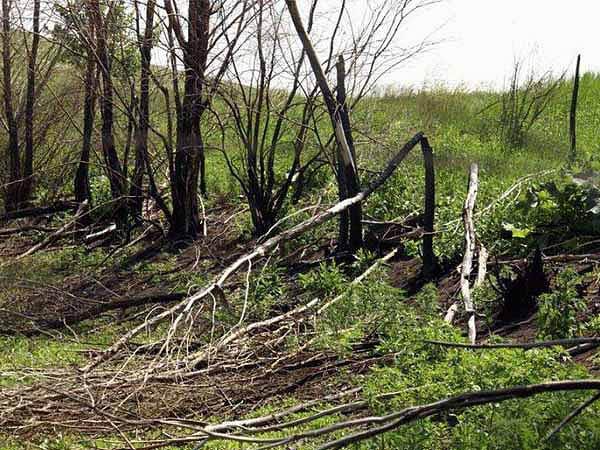 Медведицкая гряда, Волгоградская область России