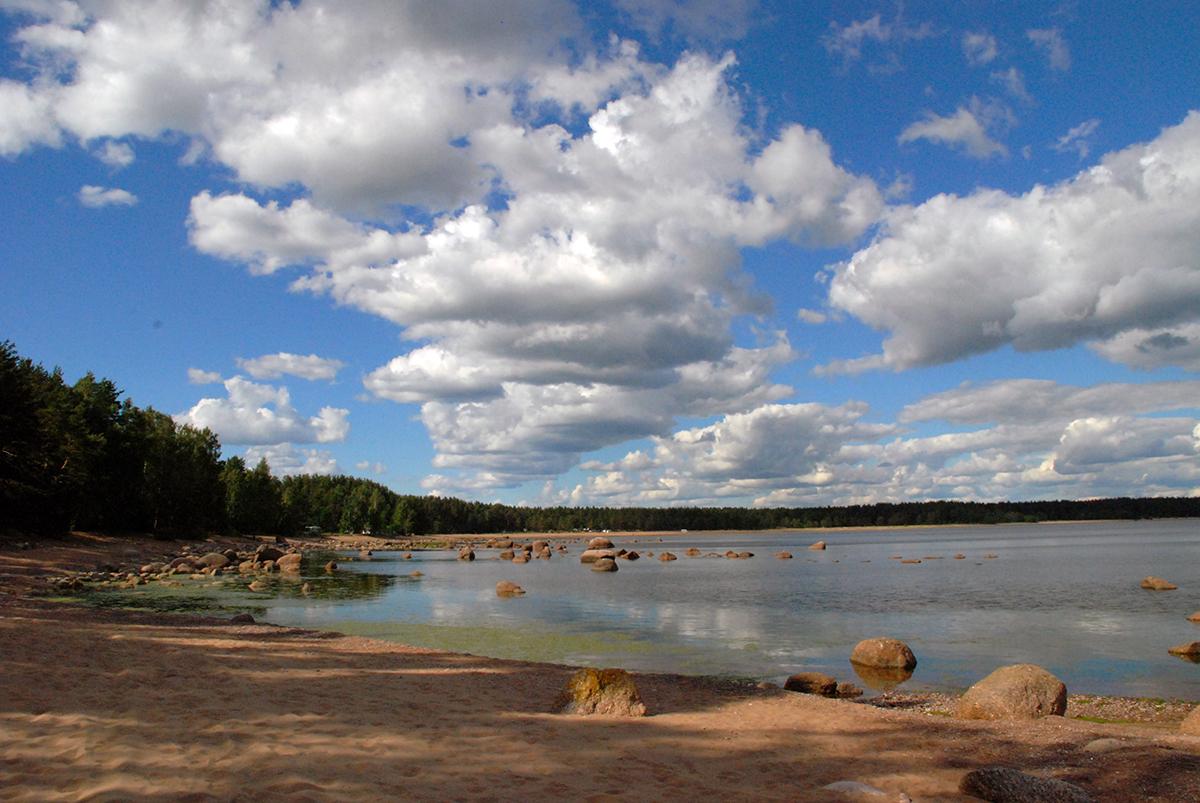 чистый берег озера