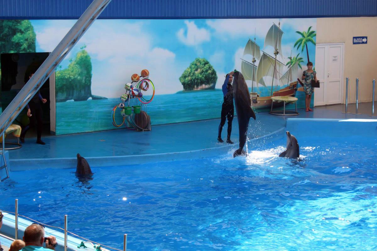 дельфинарий Немо, станица Голубицкая, Россия