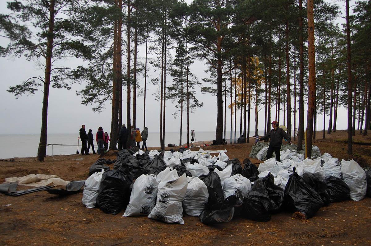 эко-организация Pro отходы