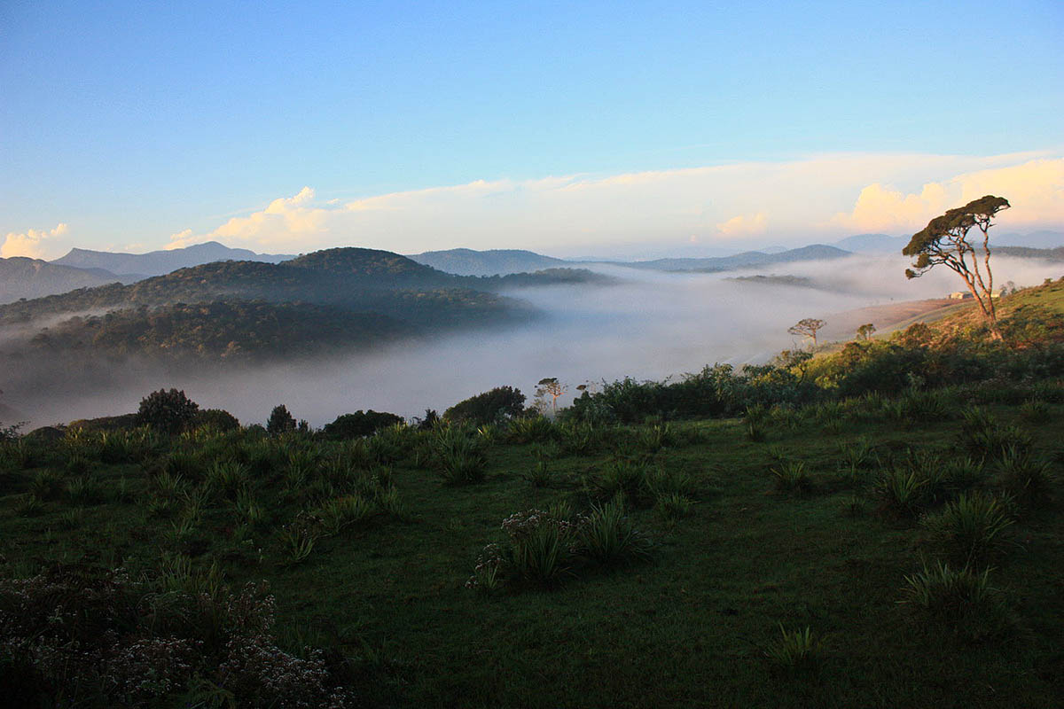 плато Хортона на Шри Ланке