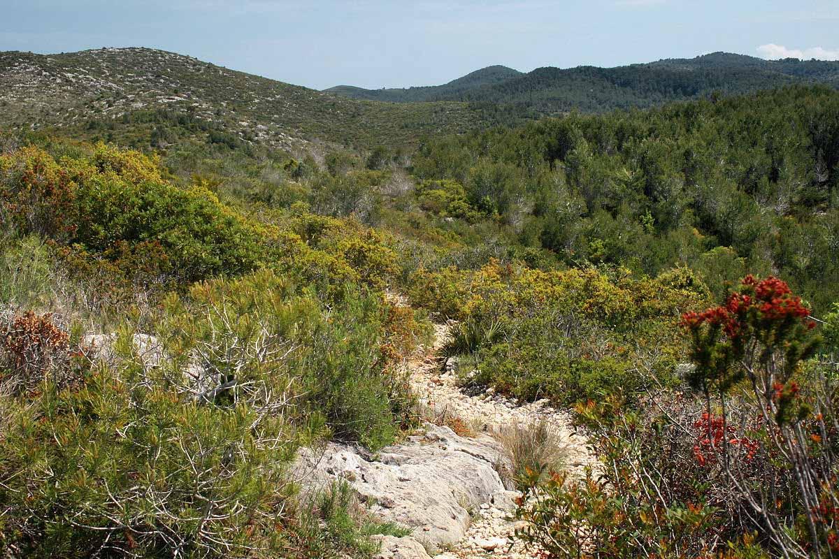 природный парк Гарраф, Испания