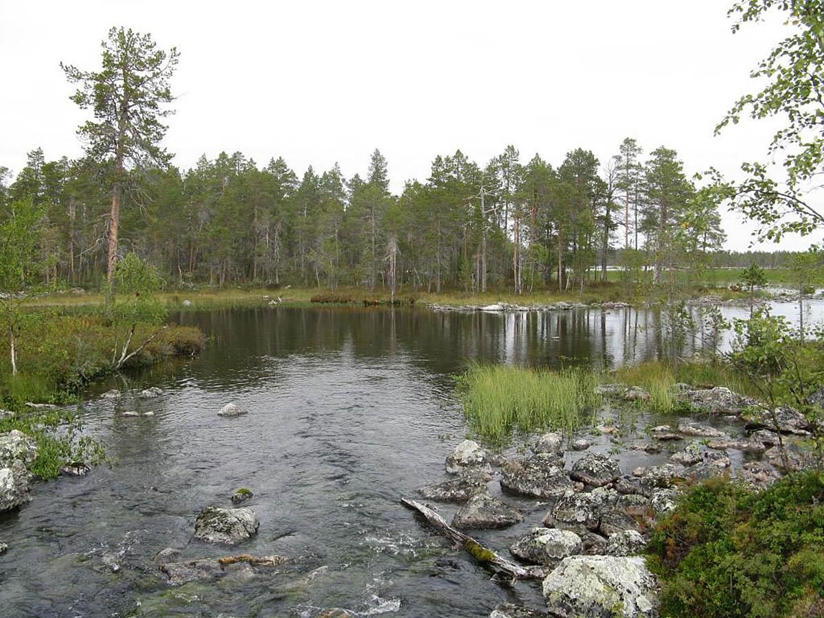 Нацпарк Овре Пасвик, Финнмарк, Норвегия