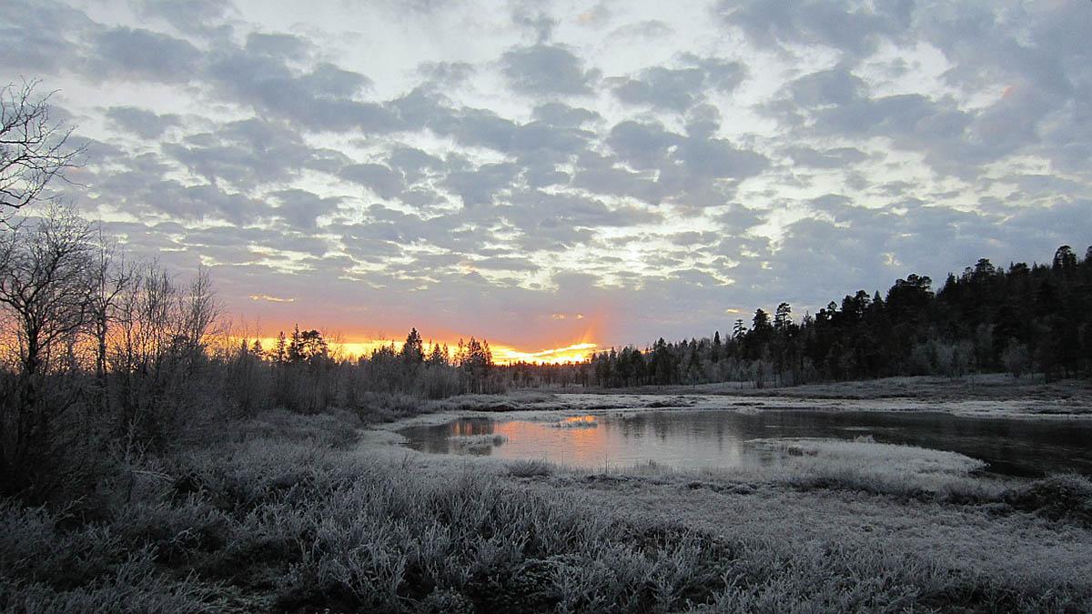 Нацпарк Овре Пасвик, Норвегия, Лапландия