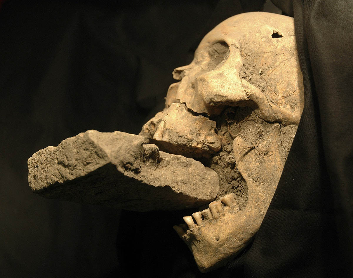 череп, придавленный камнем