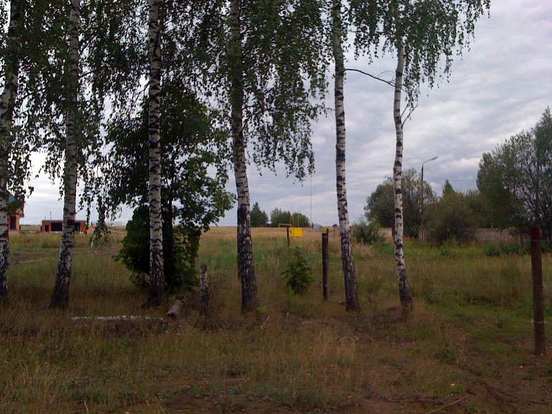 деревня Анишино, Веневский район, Тульская область