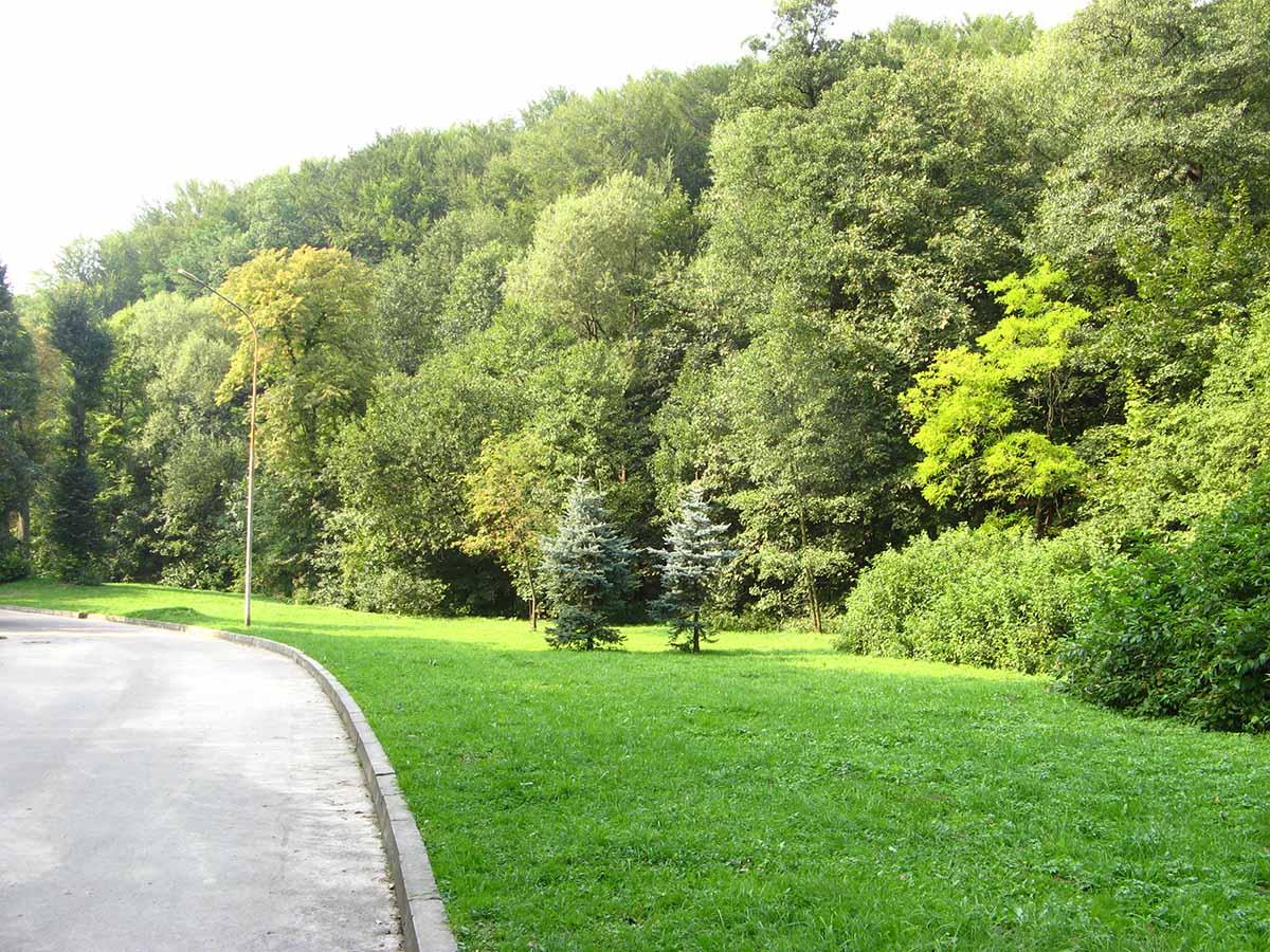 лесопарк Погулянка во Львове