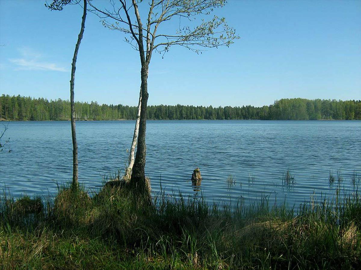 озеро Щучье, Санкт-Петербург, Россия