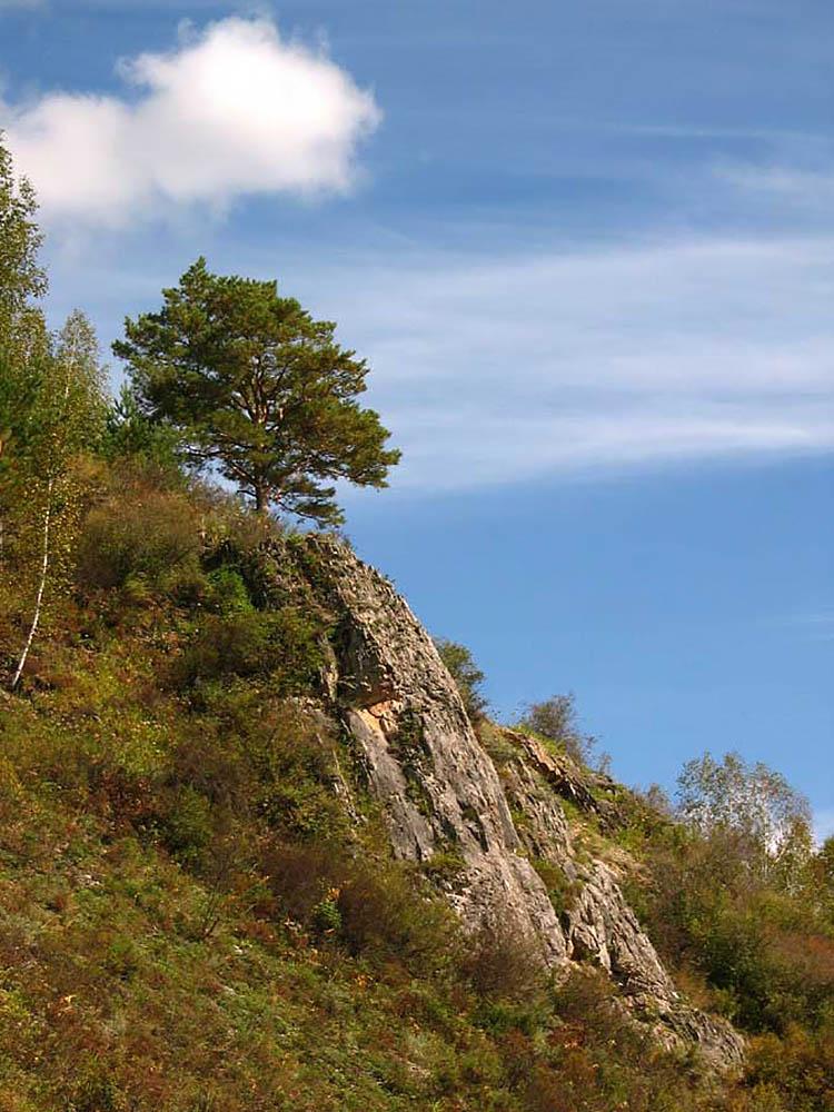 памятник природы Барсуковая пещера, Новосибирская область