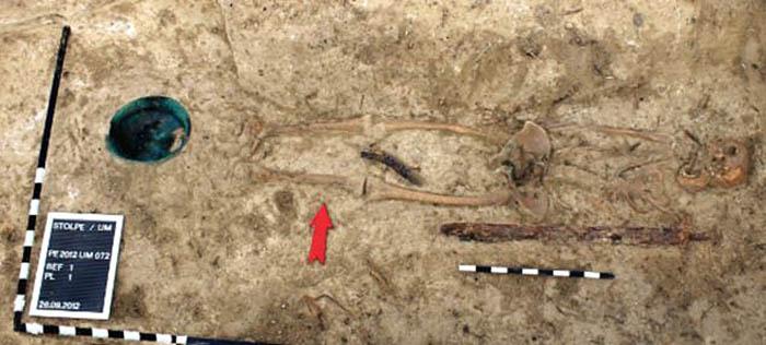 раскопки древнего захоронения в Бранденбурге