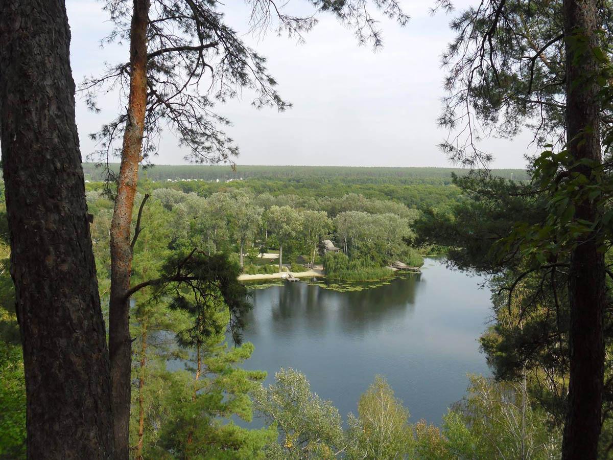 река Северский Донец, Гомольшанские леса, Украина