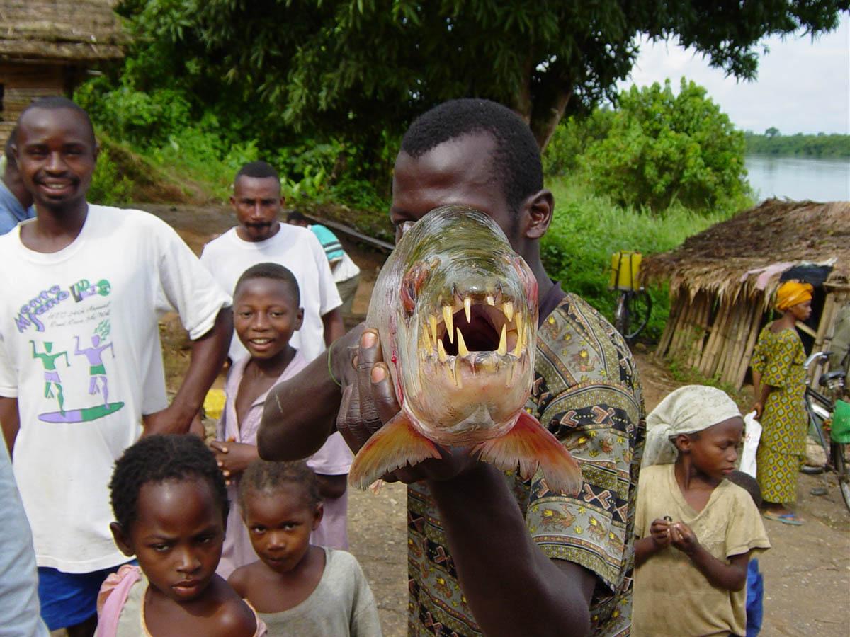 рыба капитан