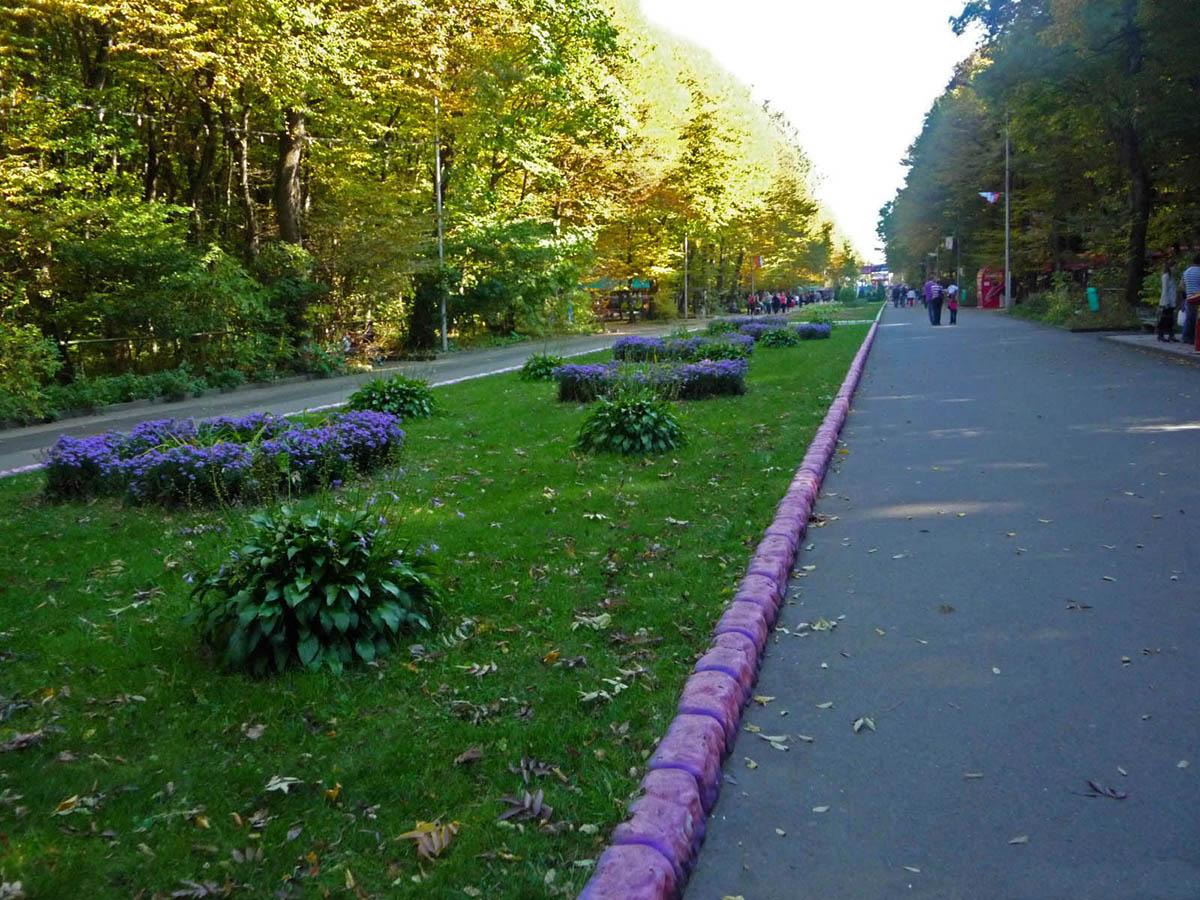 Фото парка культуры и отдыха победа города ставрополя 3