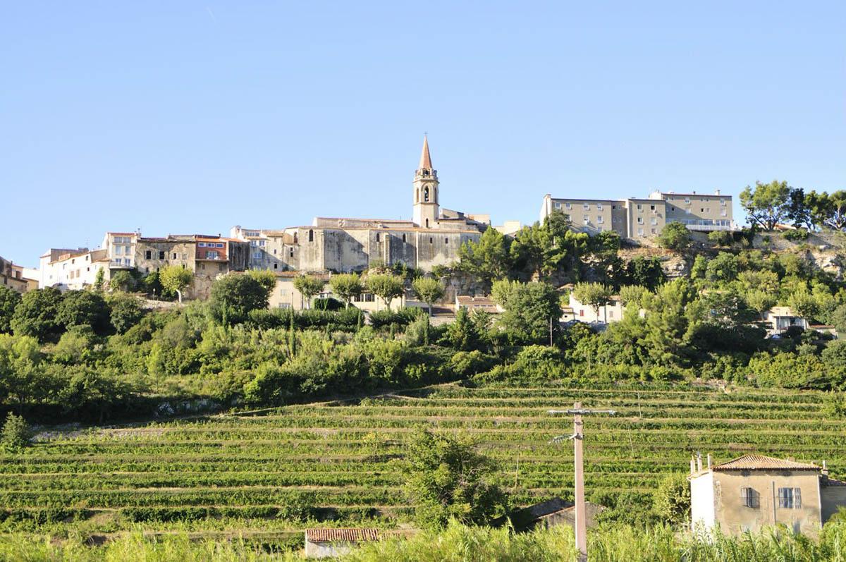 виноградники Бандоля, Франция