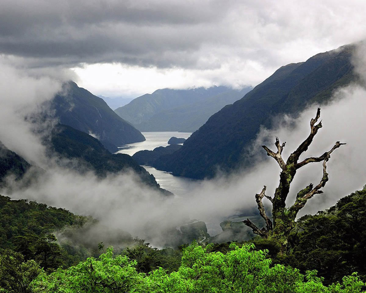 Tasman Sea, Fiordland National Park, New Zealand