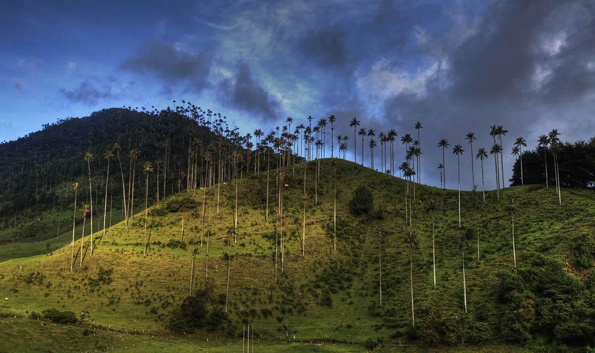 долина Кокора в Колумбии