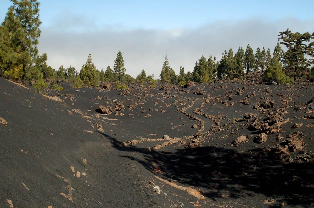 окрестности вулкана Чиньеро