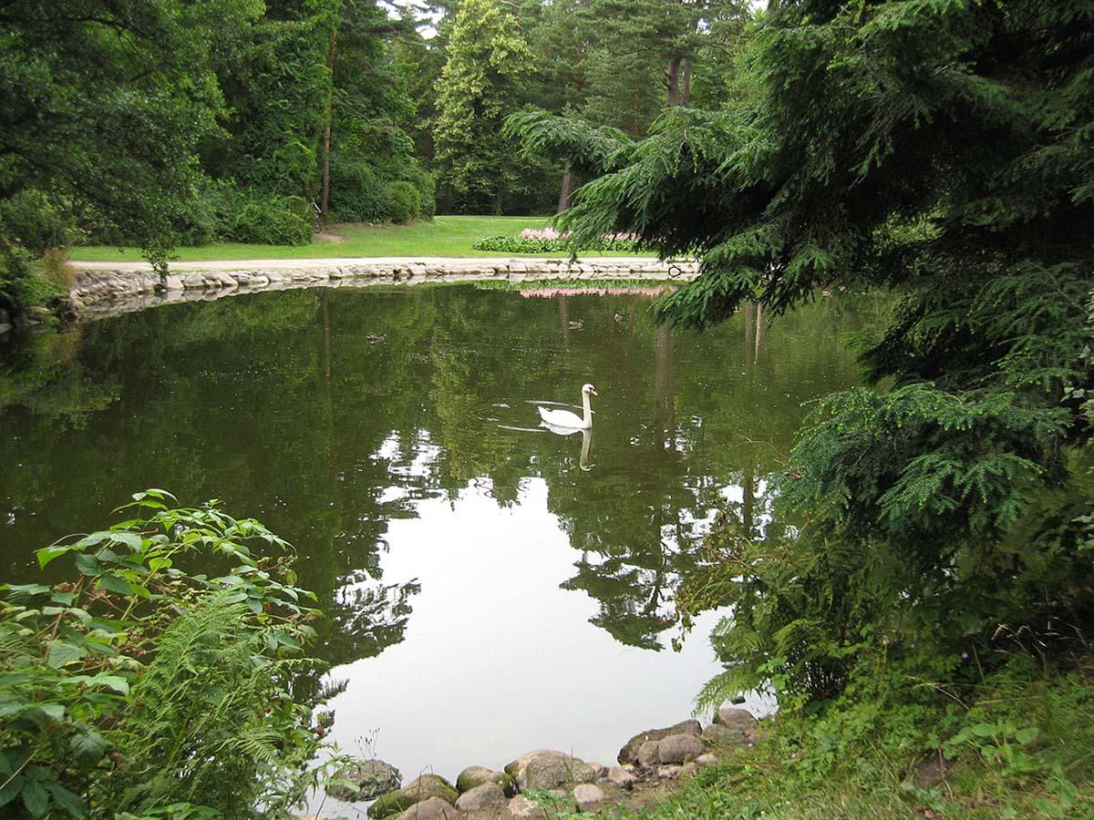 озеро в ботаническом саду курорта Паланга