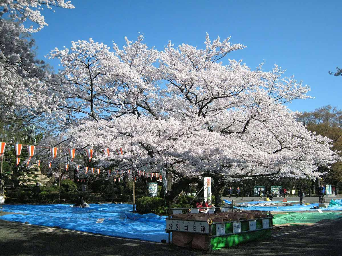 парк Уэно, Токио